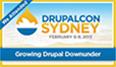 Drupal Association Member