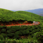 Scenic beauty of  Kerala5